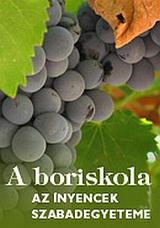 Partner - Boriskola