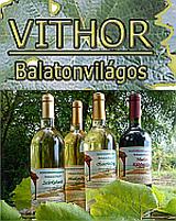 Támogató - Vithor